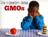 Identifying (And Avoiding) Genetically Modified Food
