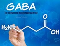 GABA: The Forgotten Neurotransmitter // OnDietAndHealth.com