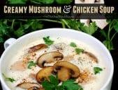 Creamy Mushroom & Chicken Soup