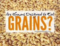Humans + Grains…. Do They Add Up?