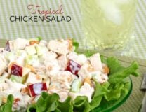 Tropical Chicken Salad // OnDietAndHealth.com