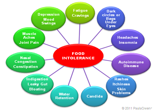 Leaky Gut Foods and Effects