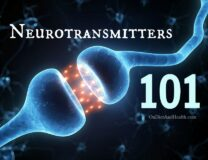 Neurotransmitters 101 // OnDietAndHealth.com