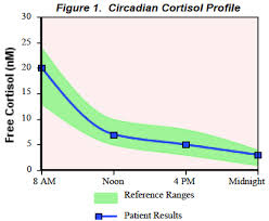 Salivary Cortisol test result graphic