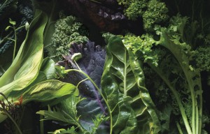 leafy greens vegetables every day