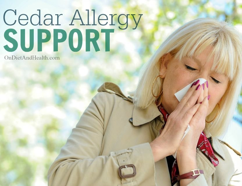 Natural, Non-Medicated #Cedar #Allergy Support // OnDietAndHealth.com