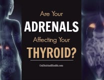 Are Your Adrenals Affecting Your Thyroid? // OnDietAndHealth.com