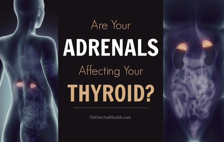 Are Your Adrenals Affecting Your Thyroid? OnDietAndHealth.com
