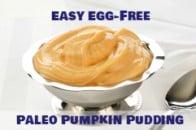 Paleo Pumpkin Pudding