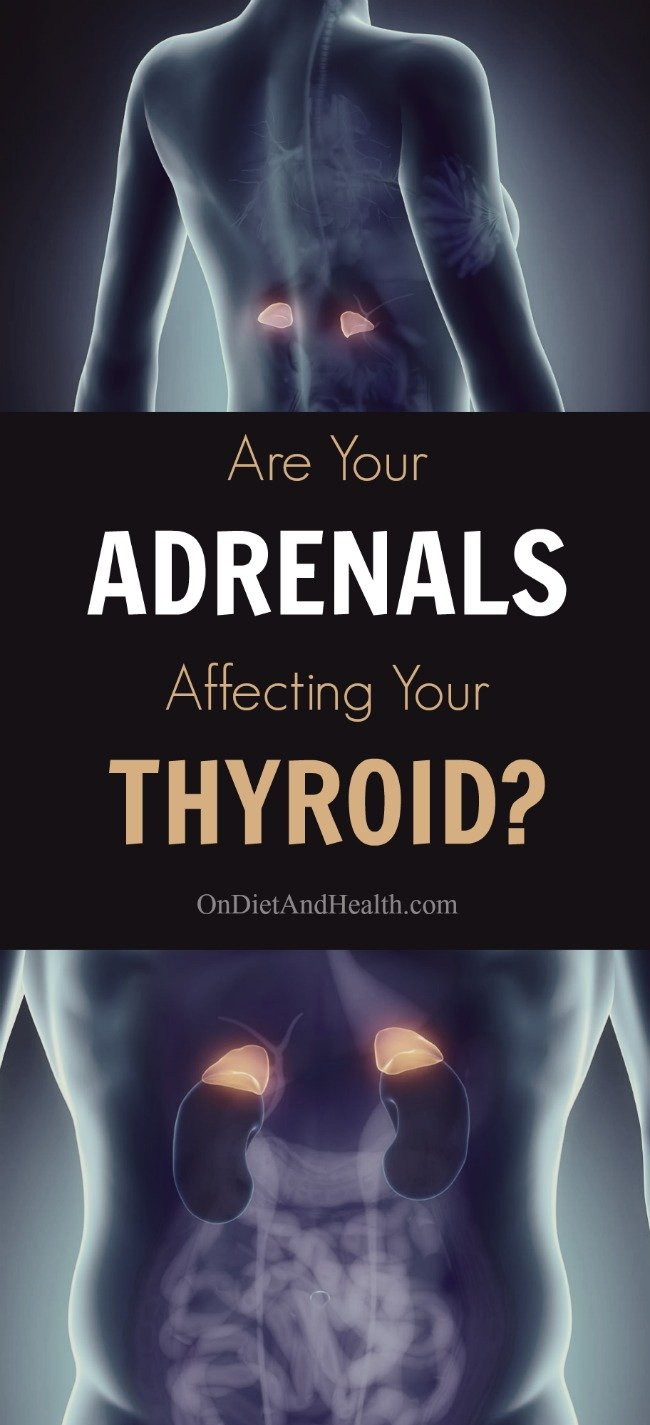 Adrenal fatigue and thyroid issues are often related. A basic adrenal and thyroid connection is missed by doctors addressing only the thyroid. Understanding how these endocrine glands affect each other helps you address adrenal fatigue and hypothyroidism at the same time. Find out more about how your adrenals can effect your thyroid! // OnDietandHealth.com