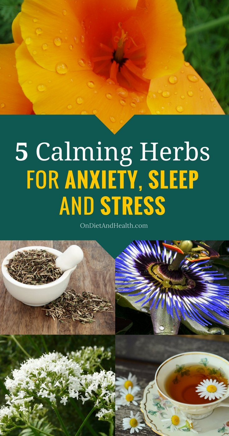 These five calming herbs for anxiety, sleep and stress can change your life. Feeling wired but tired? Herbs for sleep or stress will calm the body and mind. Take them during the day or the night. Safe and effective herbs for sleep. //OnDietandHealth.com