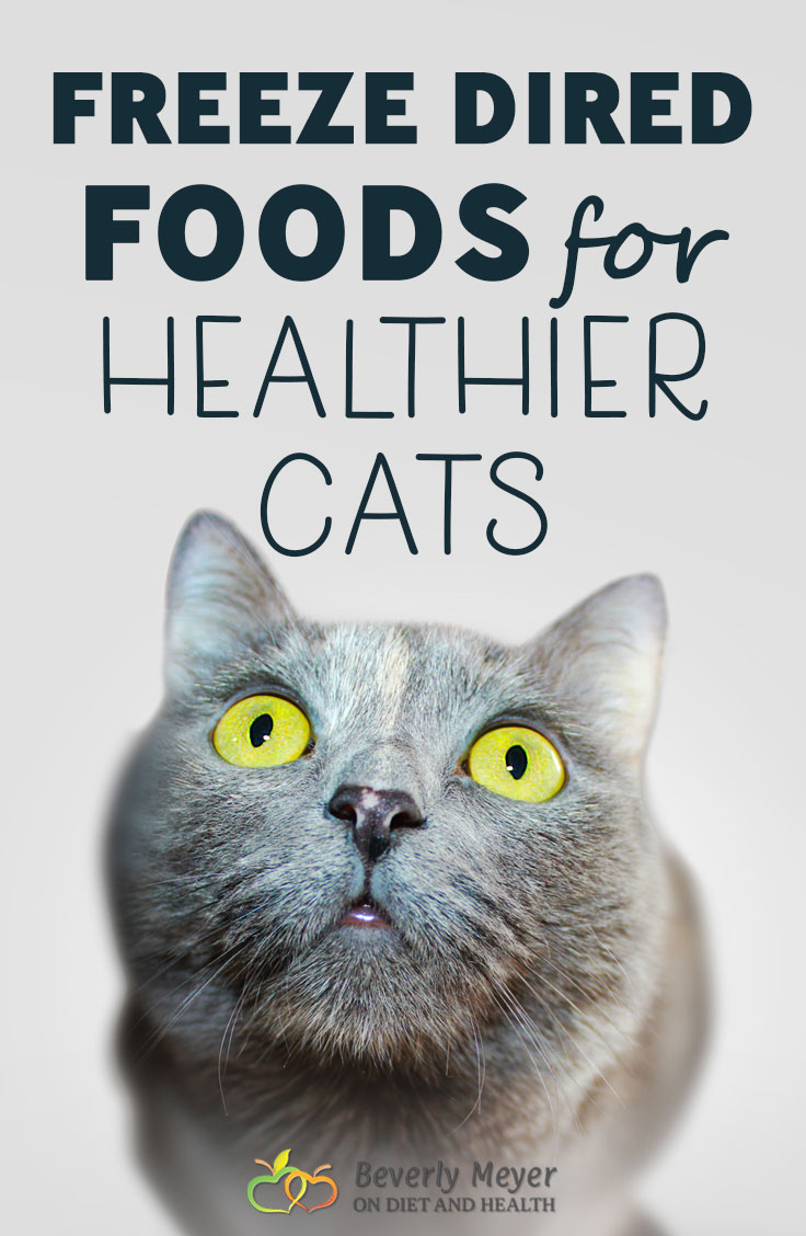 Freeze dried foods for healthier cats save money on vet bills and reduce kidney failure, the leading cause of cat death. What did cats evolve to eat? Small prey including the organs and bones. Healthier, happier cats with raw freeze-dried foods. Here's 4 top brands I use. //OnDietandHealth.com